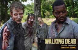 the-walking-dead-man-one-girl-hd-hd-new.jpg
